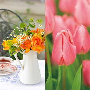 春のガーデンカフェ